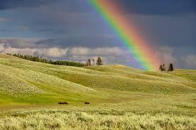 Rainbow Callers